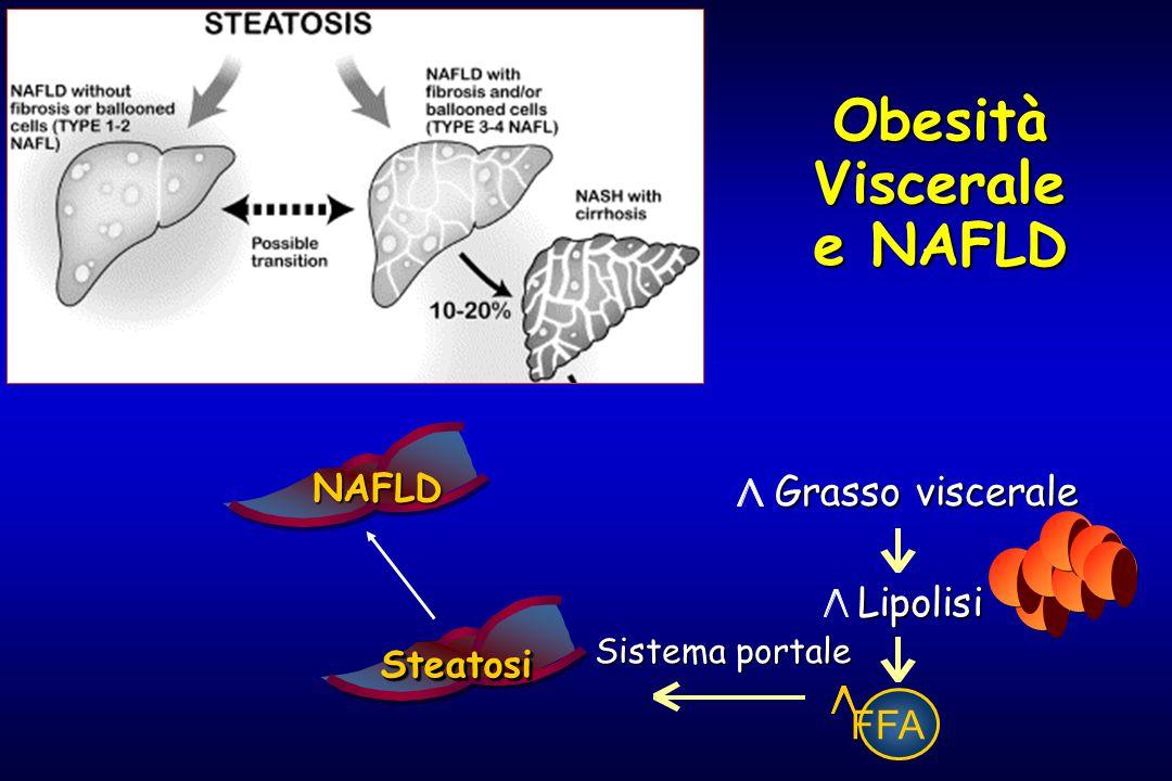 Obesità Viscerale e NAFLD FFA Lipolisi Grasso viscerale Sistema portale SteatosiSteatosi NAFLD NAFLD