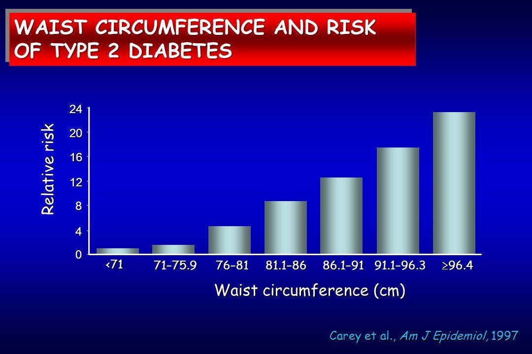 Carey et al., Am J Epidemiol, 1997 Relative risk 71–75.9 24 20 16 12 8 4 0 <71 76–8181.1–8686.1–9191.1–96.3  96.4 Waist circumference (cm) WAIST CIRC