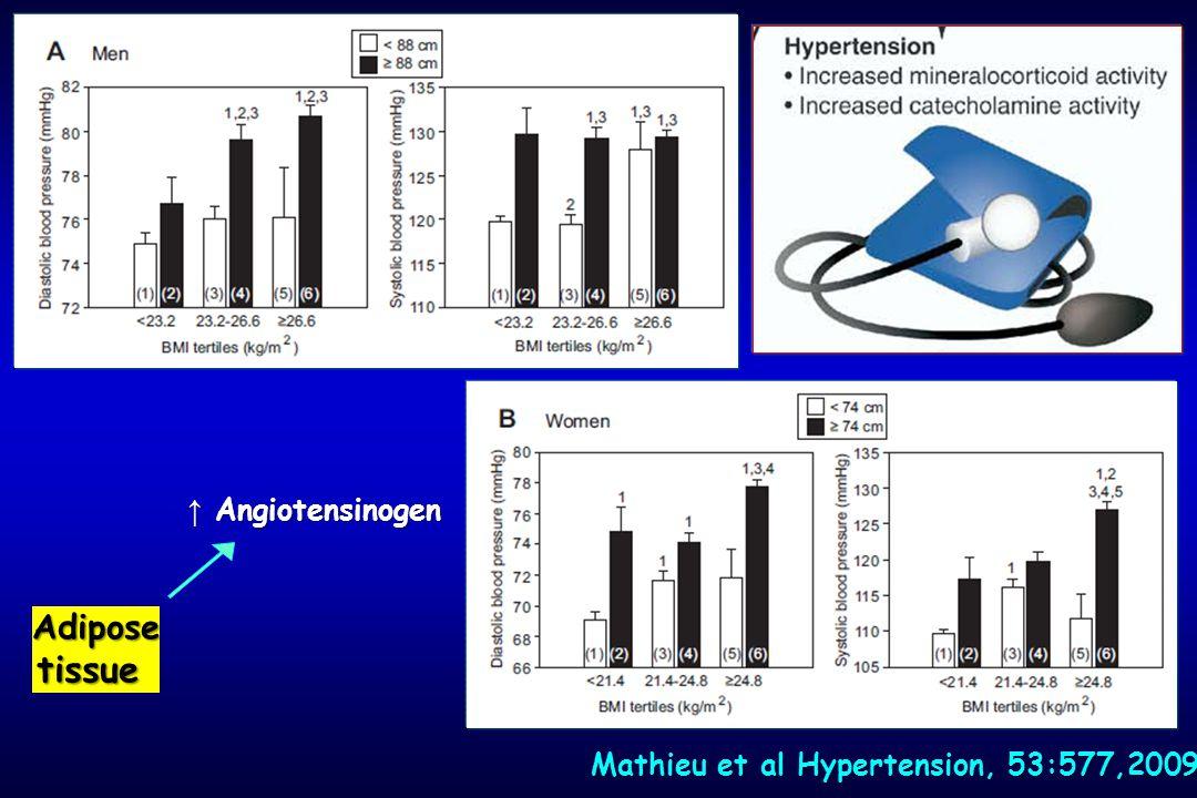 Mathieu et al Hypertension, 53:577,2009 Adipose tissue ↑ Angiotensinogen