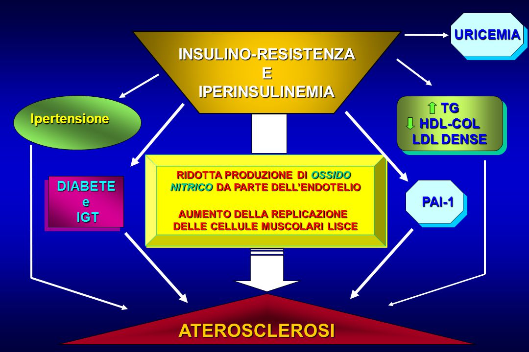 INSULINO-RESISTENZA EIPERINSULINEMIA ATEROSCLEROSI Ipertensione Ipertensione DIABETEe IGT IGTDIABETEe RIDOTTA PRODUZIONE DI OSSIDO NITRICO DA PARTE DELL'ENDOTELIO AUMENTO DELLA REPLICAZIONE DELLE CELLULE MUSCOLARI LISCE RIDOTTA PRODUZIONE DI OSSIDO NITRICO DA PARTE DELL'ENDOTELIO AUMENTO DELLA REPLICAZIONE DELLE CELLULE MUSCOLARI LISCE PAI-1 PAI-1 TGHDL-COL LDL DENSE TGHDL-COL URICEMIAURICEMIA