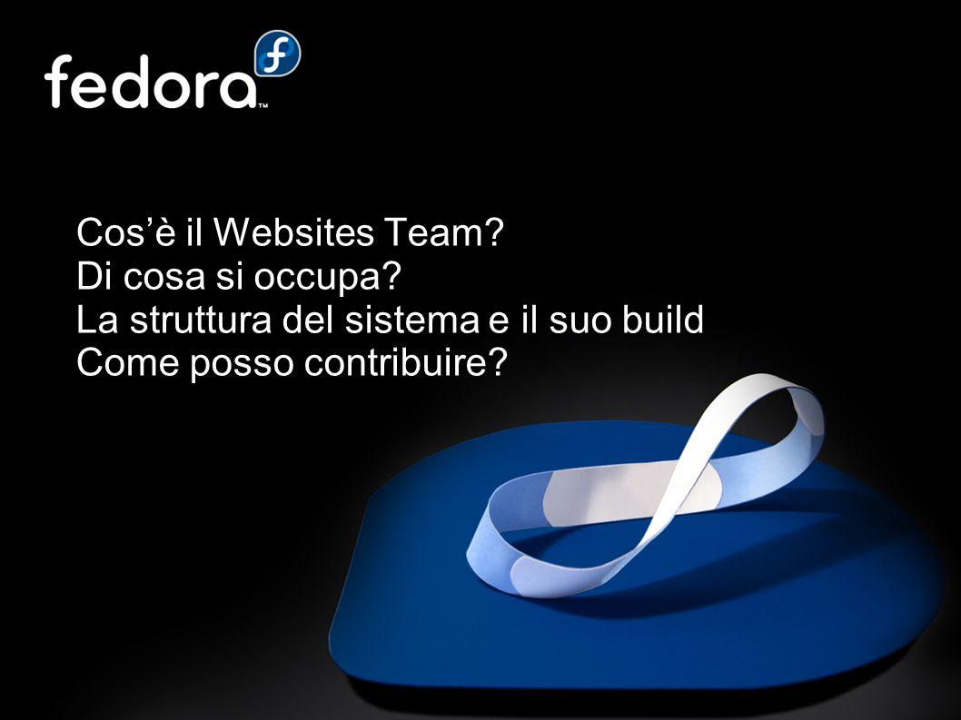 Cos'è il Websites Team. Di cosa si occupa.