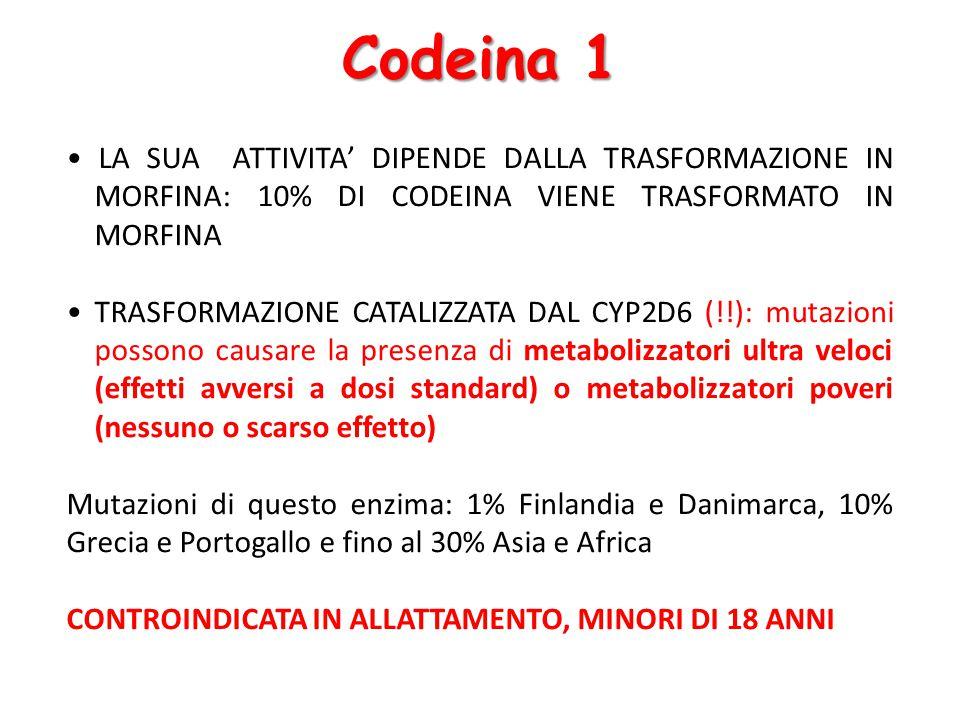 Codeina 1 LA SUA ATTIVITA' DIPENDE DALLA TRASFORMAZIONE IN MORFINA: 10% DI CODEINA VIENE TRASFORMATO IN MORFINA TRASFORMAZIONE CATALIZZATA DAL CYP2D6 (!!): mutazioni possono causare la presenza di metabolizzatori ultra veloci (effetti avversi a dosi standard) o metabolizzatori poveri (nessuno o scarso effetto) Mutazioni di questo enzima: 1% Finlandia e Danimarca, 10% Grecia e Portogallo e fino al 30% Asia e Africa CONTROINDICATA IN ALLATTAMENTO, MINORI DI 18 ANNI
