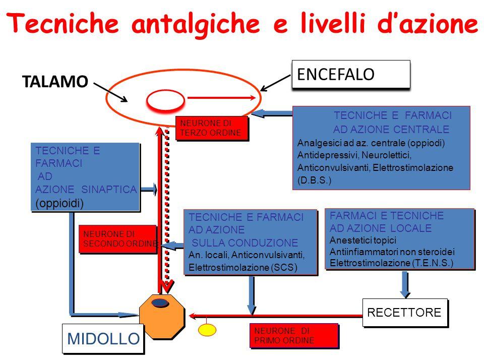 MIDOLLO RECETTORE FARMACI E TECNICHE AD AZIONE LOCALE Anestetici topici Antiinfiammatori non steroidei Elettrostimolazione (T.E.N.S.) FARMACI E TECNICHE AD AZIONE LOCALE Anestetici topici Antiinfiammatori non steroidei Elettrostimolazione (T.E.N.S.) NEURONE DI SECONDO ORDINE NEURONE DI SECONDO ORDINE NEURONE DI PRIMO ORDINE NEURONE DI PRIMO ORDINE ENCEFALO TECNICHE E FARMACI AD AZIONE CENTRALE Analgesici ad az.