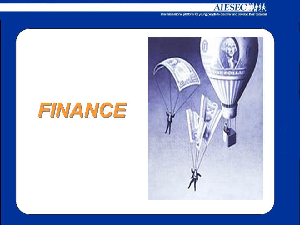 Gestirà il processo di budgeting; Si occuperà del book keeping Garantisce l'economicità del Comitato