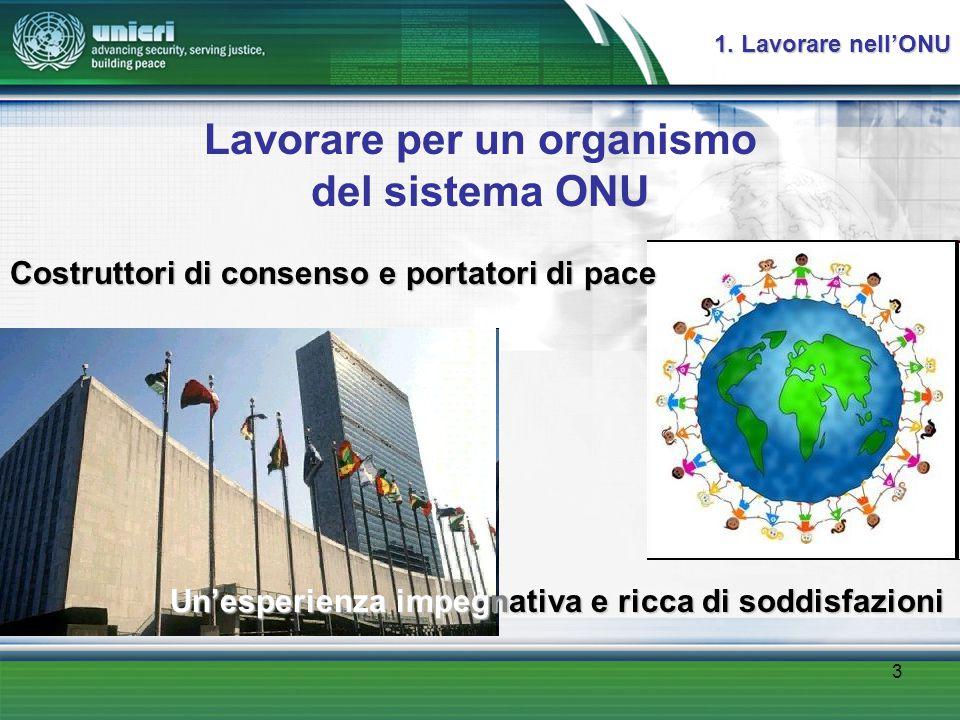 3 Lavorare per un organismo del sistema ONU 1.