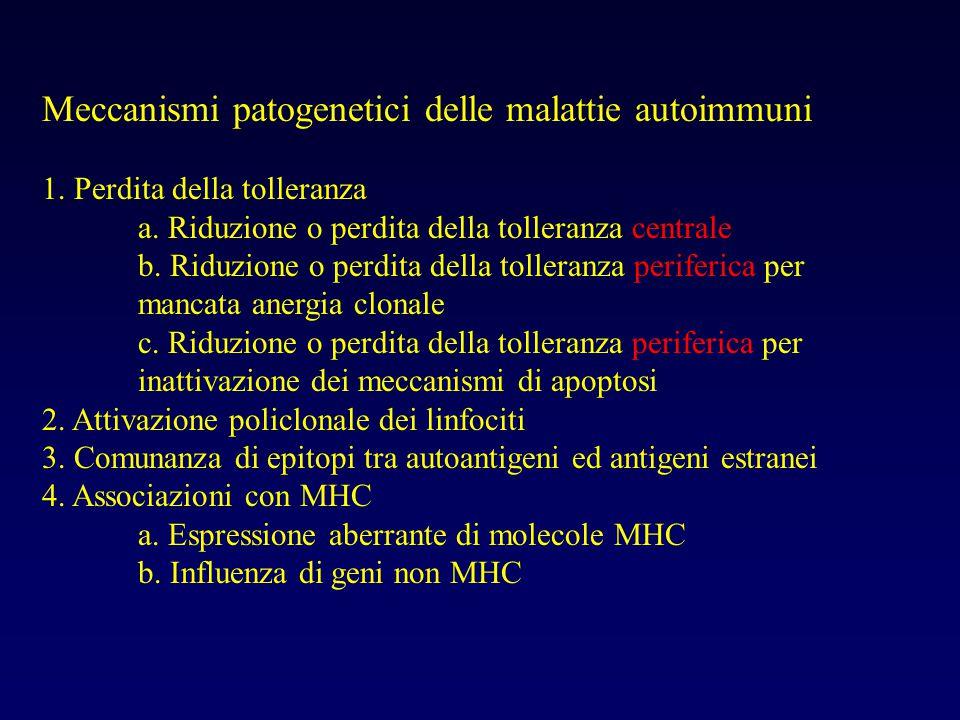 Meccanismi patogenetici delle malattie autoimmuni 1. Perdita della tolleranza a. Riduzione o perdita della tolleranza centrale b. Riduzione o perdita