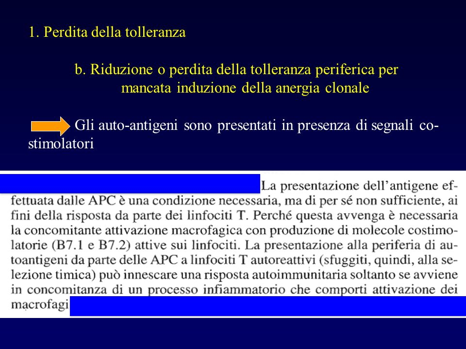 1. Perdita della tolleranza b. Riduzione o perdita della tolleranza periferica per mancata induzione della anergia clonale Gli auto-antigeni sono pres