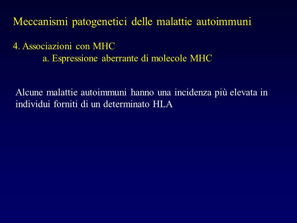Meccanismi patogenetici delle malattie autoimmuni 4. Associazioni con MHC a. Espressione aberrante di molecole MHC Alcune malattie autoimmuni hanno un