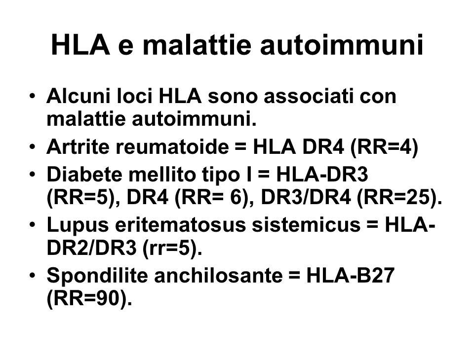 HLA e malattie autoimmuni Alcuni loci HLA sono associati con malattie autoimmuni. Artrite reumatoide = HLA DR4 (RR=4) Diabete mellito tipo I = HLA-DR3