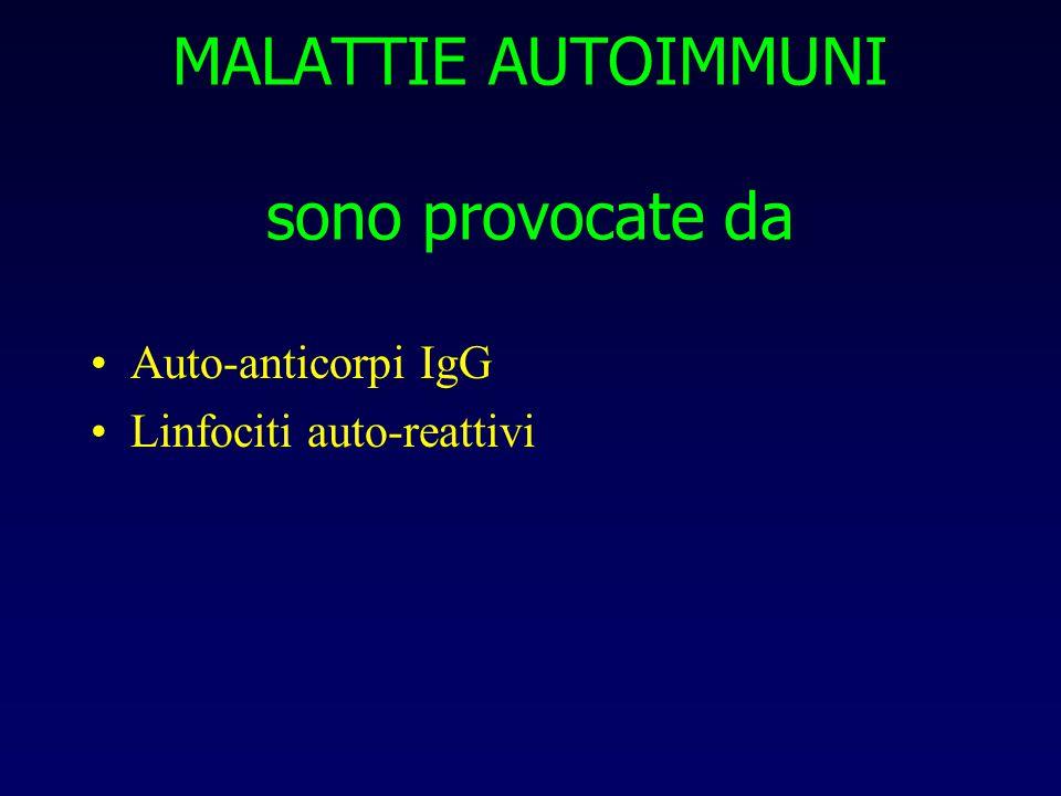 MALATTIE AUTOIMMUNI sono provocate da Auto-anticorpi IgG Linfociti auto-reattivi