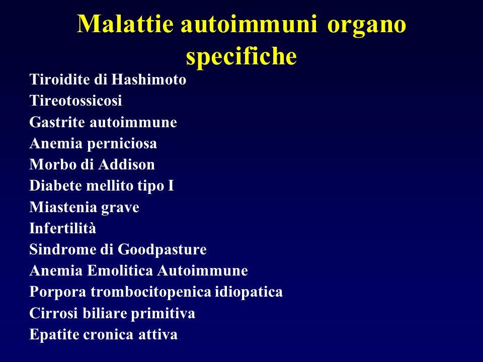 Malattie autoimmuni organo specifiche Tiroidite di Hashimoto Tireotossicosi Gastrite autoimmune Anemia perniciosa Morbo di Addison Diabete mellito tip