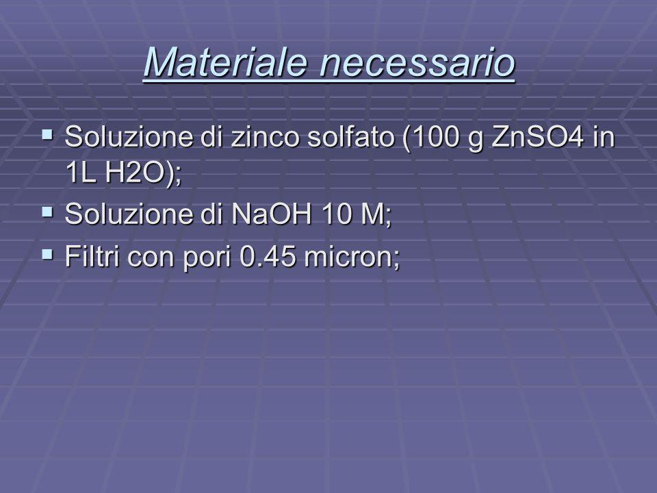 Materiale necessario  Soluzione di zinco solfato (100 g ZnSO4 in 1L H2O);  Soluzione di NaOH 10 M;  Filtri con pori 0.45 micron;