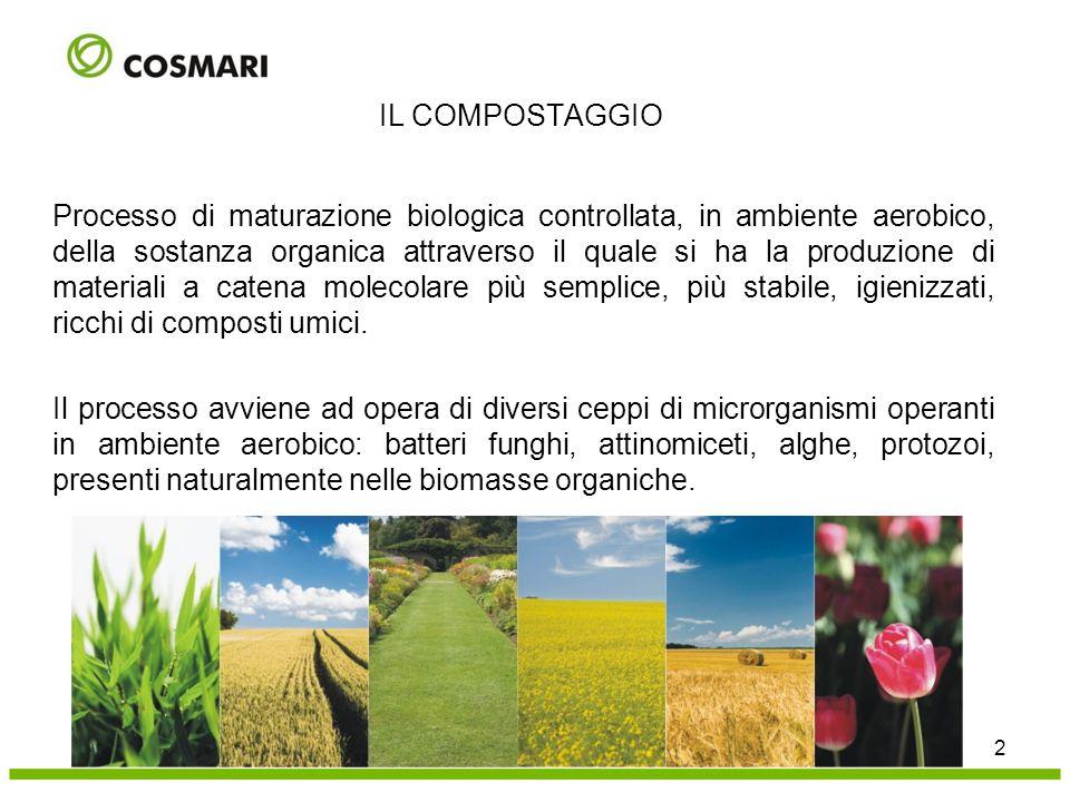 Processo di maturazione biologica controllata, in ambiente aerobico, della sostanza organica attraverso il quale si ha la produzione di materiali a ca