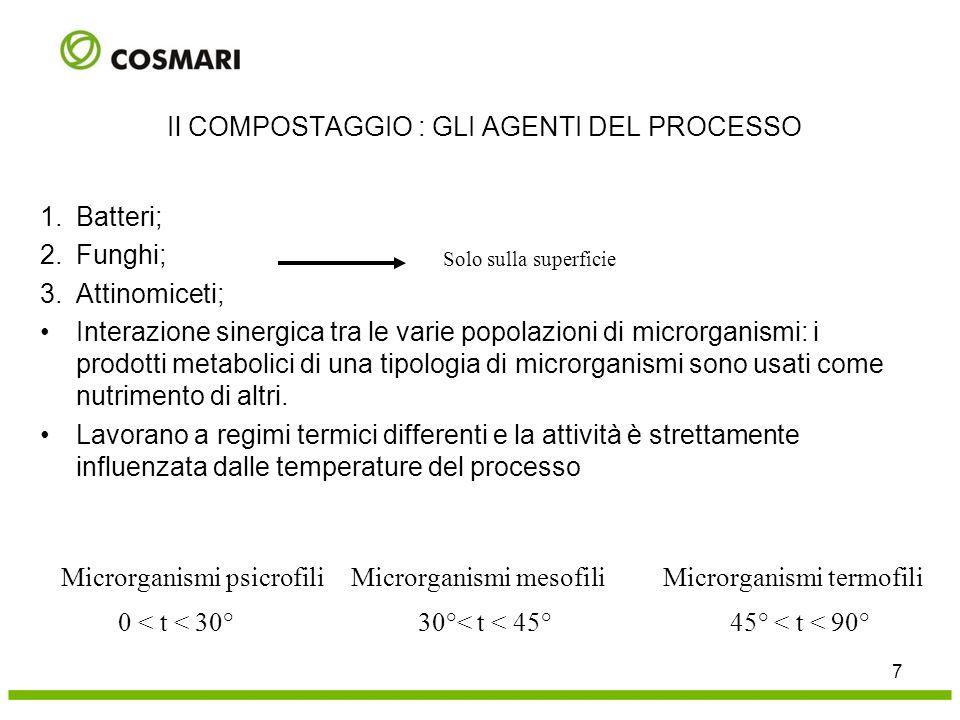 1.Batteri; 2.Funghi; 3.Attinomiceti; Interazione sinergica tra le varie popolazioni di microrganismi: i prodotti metabolici di una tipologia di micror