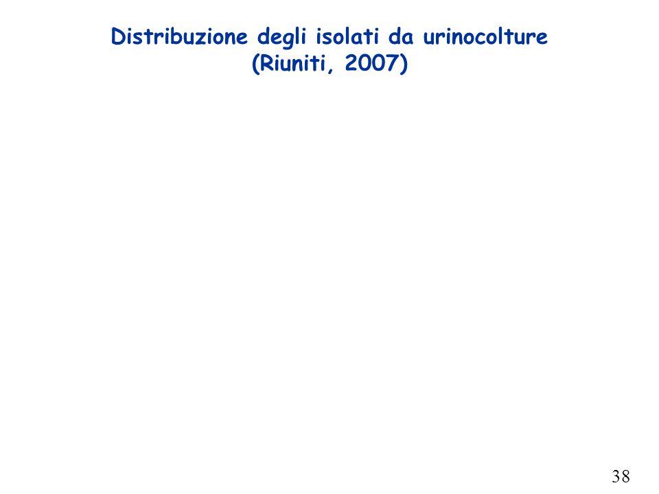 38 Distribuzione degli isolati da urinocolture (Riuniti, 2007)