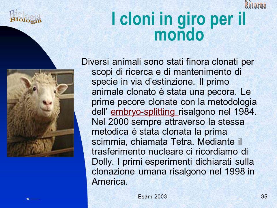 Esami 200335 I cloni in giro per il mondo Diversi animali sono stati finora clonati per scopi di ricerca e di mantenimento di specie in via d'estinzione.