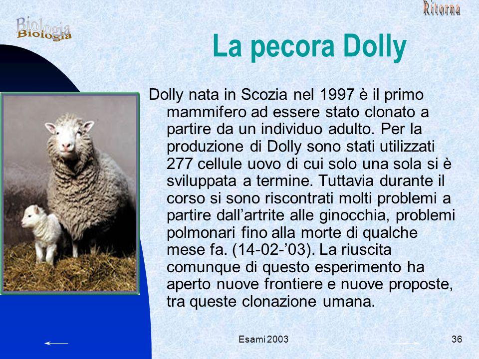 Esami 200336 La pecora Dolly Dolly nata in Scozia nel 1997 è il primo mammifero ad essere stato clonato a partire da un individuo adulto. Per la produ