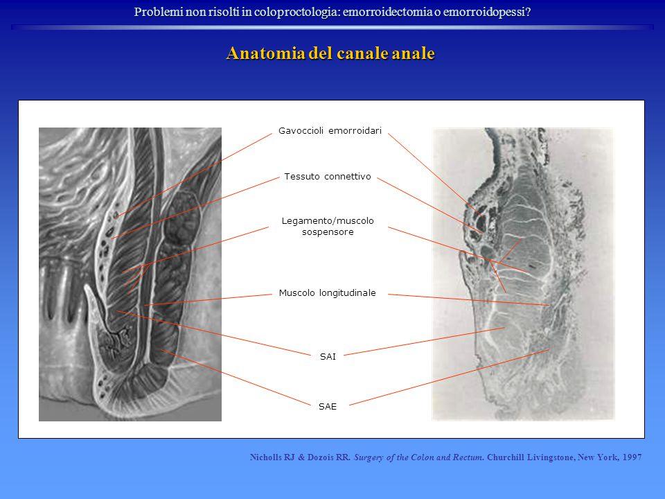 Problemi non risolti in coloproctologia: emorroidectomia o emorroidopessi.