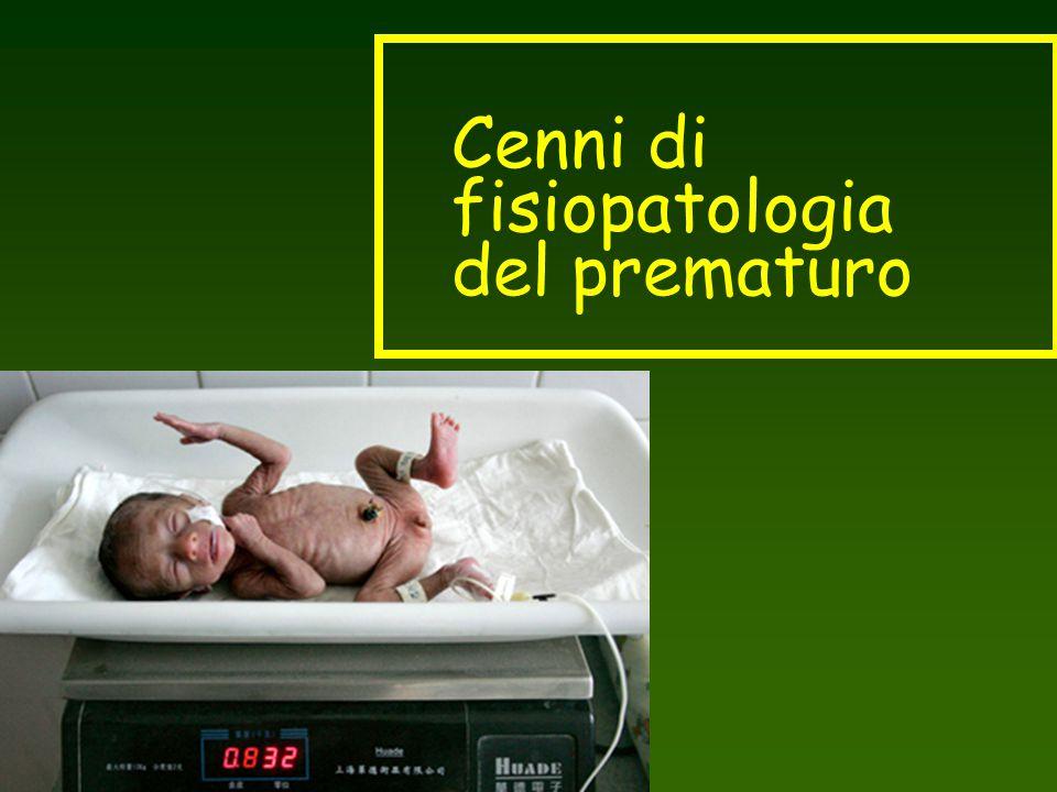 Cenni di fisiopatologia del prematuro