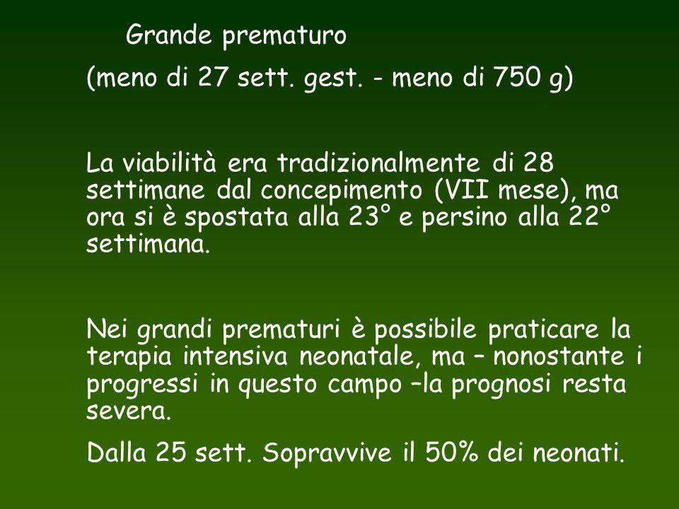 Grande prematuro (meno di 27 sett. gest. - meno di 750 g) La viabilità era tradizionalmente di 28 settimane dal concepimento (VII mese), ma ora si è s