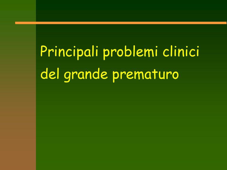 Principali problemi clinici del grande prematuro