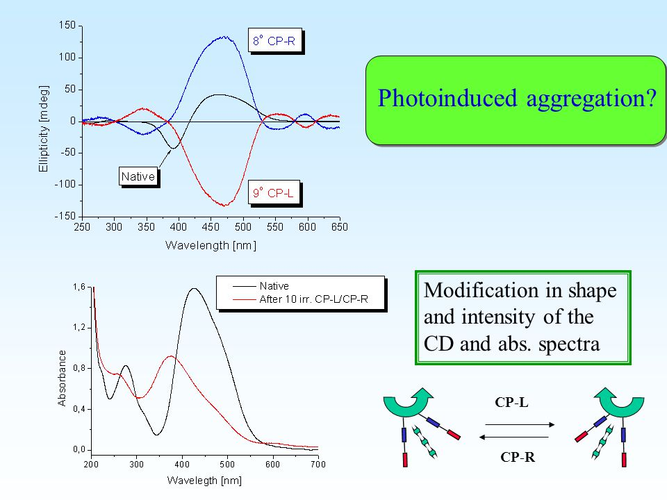 Modification in shape and intensity of the CD and abs. spectra Photoinduced aggregation? CP-L CP-R