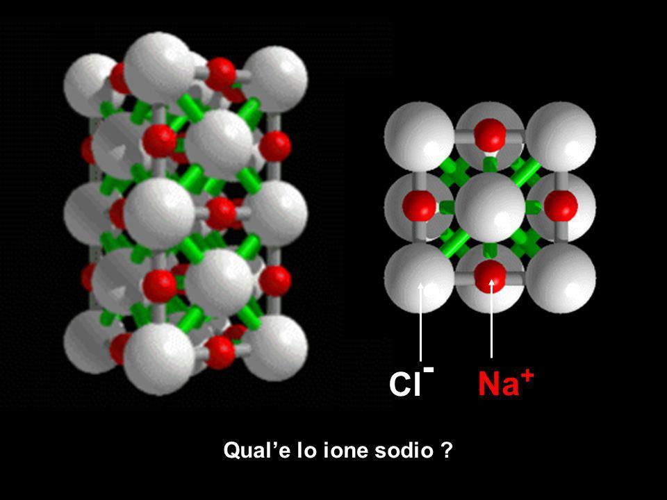 Qual'e lo ione sodio ? Na + Cl -