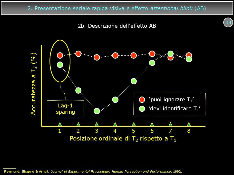 13 12345678 Accuratezza a T 2 (%) Posizione ordinale di T 2 rispetto a T 1 'puoi ignorare T 1 ' 'devi identificare T 1 ' Lag-1 sparing 2. Presentazion