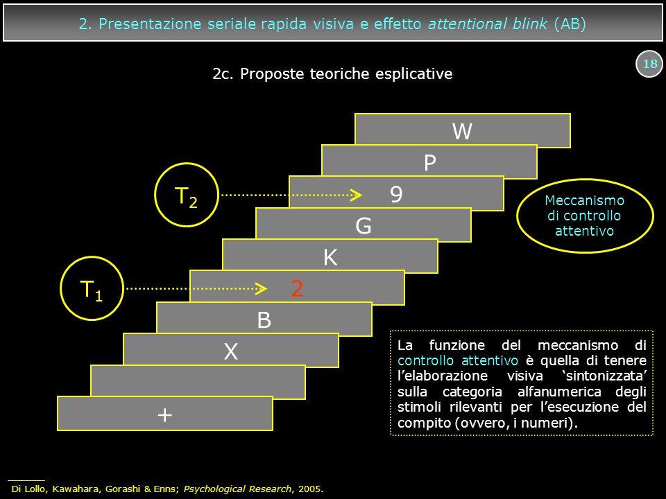 18 W P 9 G K 2 B X + T2T2 T1T1 Meccanismo di controllo attentivo La funzione del meccanismo di controllo attentivo è quella di tenere l'elaborazione v