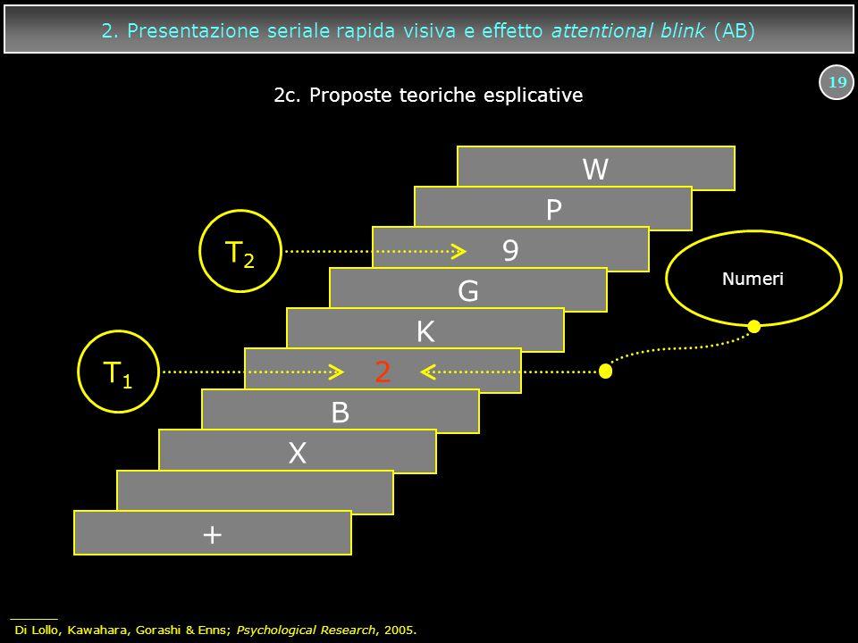19 W P 9 G K 2 B X + T2T2 T1T1 Numeri 2. Presentazione seriale rapida visiva e effetto attentional blink (AB) 2c. Proposte teoriche esplicative Di Lol