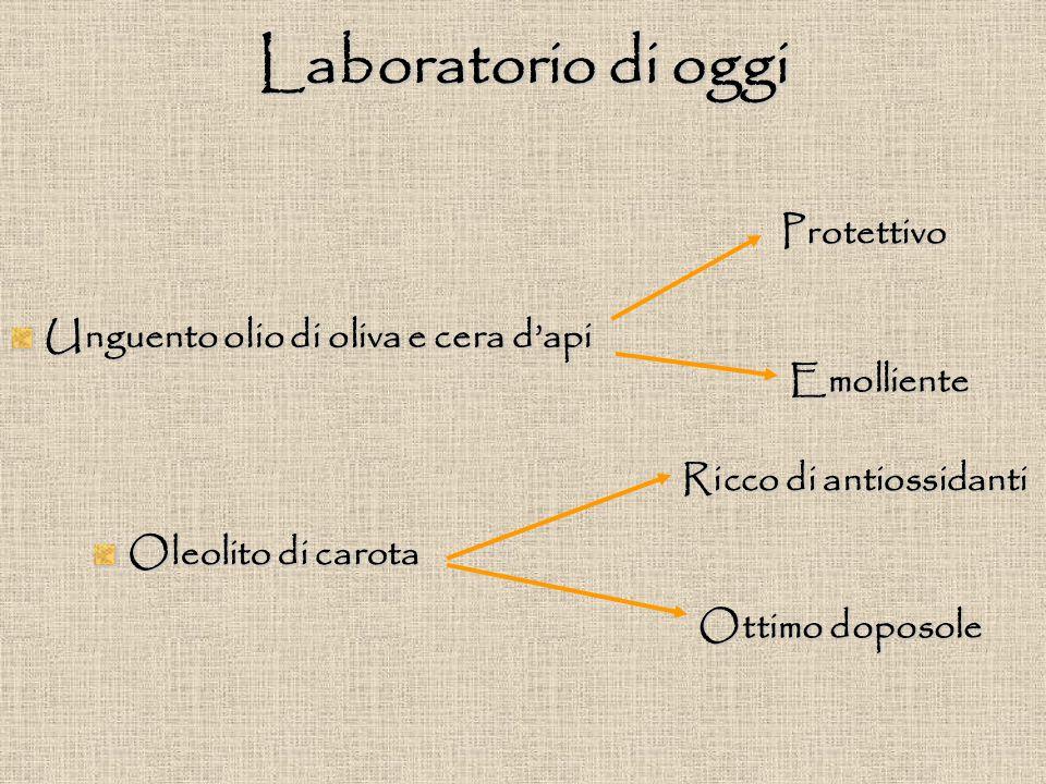 Laboratorio di oggi Unguento olio di oliva e cera d'api Oleolito di carota Protettivo Emolliente Ricco di antiossidanti Ottimo doposole