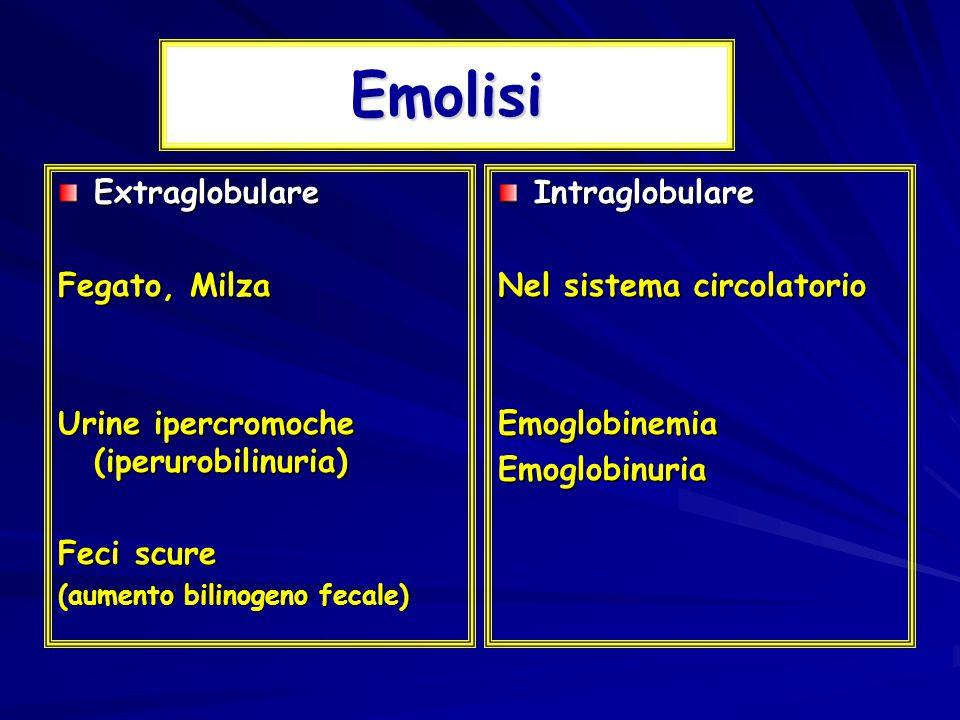 Emolisi Extraglobulare Fegato, Milza Urine ipercromoche (iperurobilinuria) Feci scure (aumento bilinogeno fecale) Intraglobulare Nel sistema circolatorio EmoglobinemiaEmoglobinuria