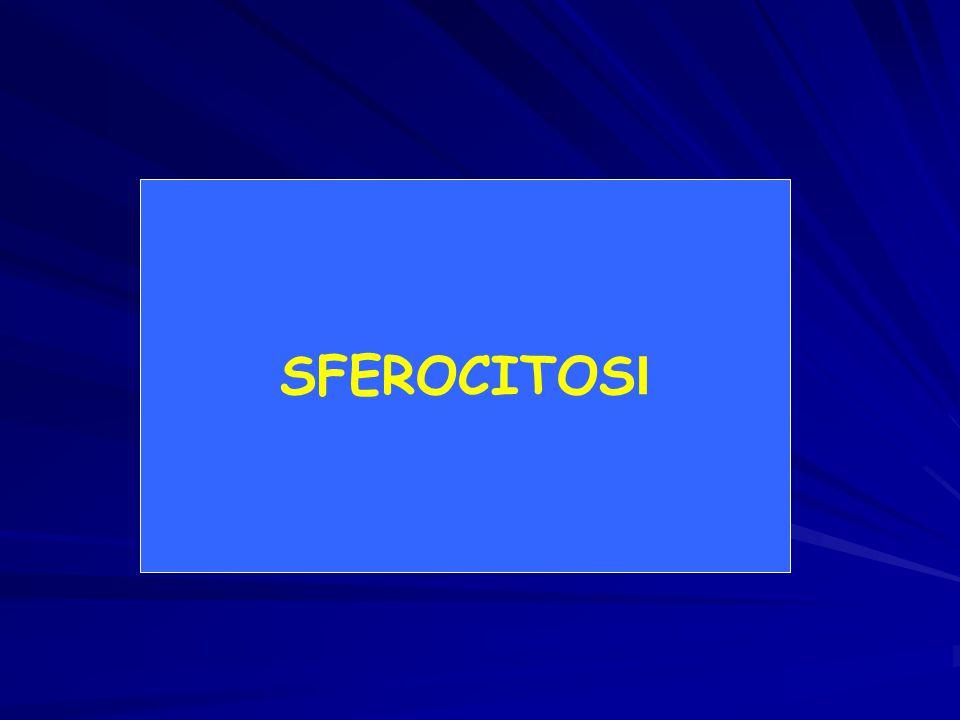 SFEROCITOS I