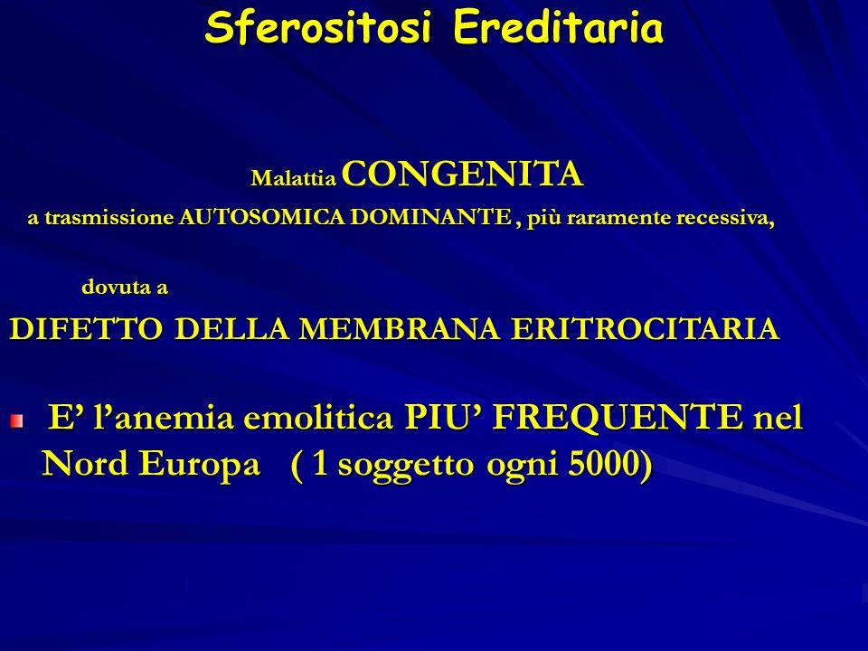 Sferositosi Ereditaria Malattia CONGENITA Malattia CONGENITA a trasmissione AUTOSOMICA DOMINANTE, più raramente recessiva, a trasmissione AUTOSOMICA DOMINANTE, più raramente recessiva, dovuta a dovuta a DIFETTO DELLA MEMBRANA ERITROCITARIA E' l'anemia emolitica PIU' FREQUENTE nel Nord Europa ( 1 soggetto ogni 5000) E' l'anemia emolitica PIU' FREQUENTE nel Nord Europa ( 1 soggetto ogni 5000)