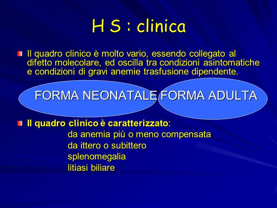 H S : clinica Il quadro clinico è molto vario, essendo collegato al difetto molecolare, ed oscilla tra condizioni asintomatiche e condizioni di gravi anemie trasfusione dipendente.