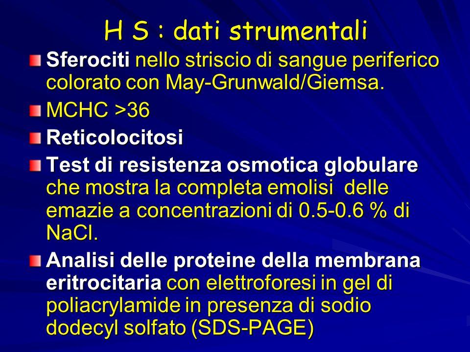 H S : dati strumentali Sferociti nello striscio di sangue periferico colorato con May-Grunwald/Giemsa. MCHC >36 Reticolocitosi Test di resistenza osmo