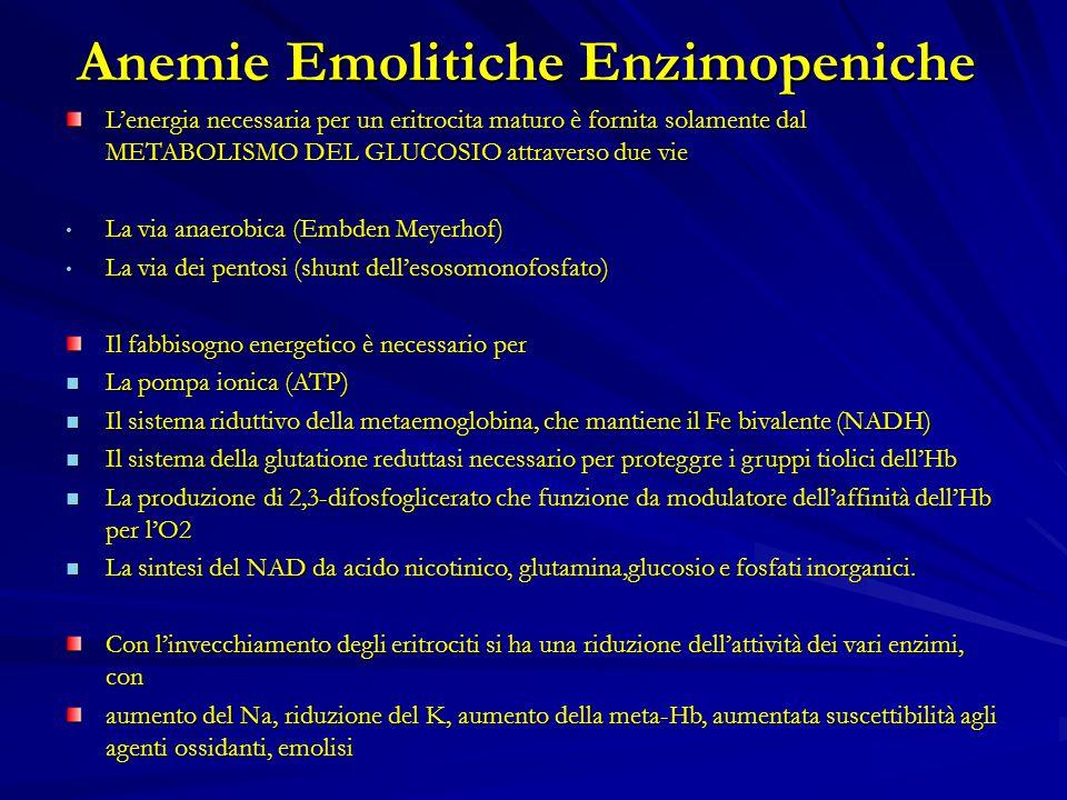 Anemie Emolitiche Enzimopeniche L'energia necessaria per un eritrocita maturo è fornita solamente dal METABOLISMO DEL GLUCOSIO attraverso due vie La via anaerobica (Embden Meyerhof)La via anaerobica (Embden Meyerhof) La via dei pentosi (shunt dell'esosomonofosfato)La via dei pentosi (shunt dell'esosomonofosfato) Il fabbisogno energetico è necessario per La pompa ionica (ATP) La pompa ionica (ATP) Il sistema riduttivo della metaemoglobina, che mantiene il Fe bivalente (NADH) Il sistema riduttivo della metaemoglobina, che mantiene il Fe bivalente (NADH) Il sistema della glutatione reduttasi necessario per proteggre i gruppi tiolici dell'Hb Il sistema della glutatione reduttasi necessario per proteggre i gruppi tiolici dell'Hb La produzione di 2,3-difosfoglicerato che funzione da modulatore dell'affinità dell'Hb per l'O2 La produzione di 2,3-difosfoglicerato che funzione da modulatore dell'affinità dell'Hb per l'O2 La sintesi del NAD da acido nicotinico, glutamina,glucosio e fosfati inorganici.