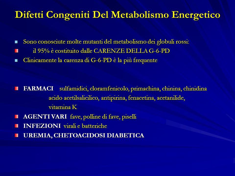 Difetti Congeniti Del Metabolismo Energetico Sono conosciute molte mutanti del metabolismo dei globuli rossi: Sono conosciute molte mutanti del metabolismo dei globuli rossi: il 95% è costituito dalle CARENZE DELLA G-6-PD il 95% è costituito dalle CARENZE DELLA G-6-PD Clinicamente la carenza di G-6-PD è la più frequente Clinicamente la carenza di G-6-PD è la più frequente FARMACI sulfamidici, cloramfenicolo, primachina, chinina, chinidina acido acetilsalicilico, antipirina, fenacetina, acetanilide, acido acetilsalicilico, antipirina, fenacetina, acetanilide, vitamina K vitamina K AGENTI VARI fave, polline di fave, piselli INFEZIONI virali e batteriche UREMIA, CHETOACIDOSI DIABETICA
