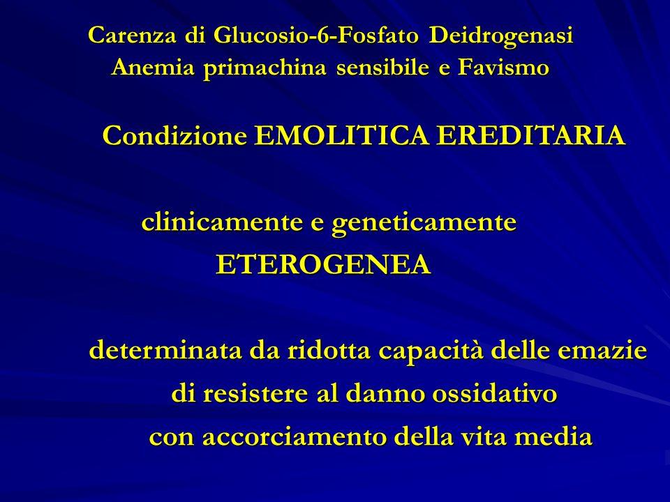 Carenza di Glucosio-6-Fosfato Deidrogenasi Anemia primachina sensibile e Favismo Condizione EMOLITICA EREDITARIA Condizione EMOLITICA EREDITARIA clinicamente e geneticamente clinicamente e geneticamente ETEROGENEA ETEROGENEA determinata da ridotta capacità delle emazie determinata da ridotta capacità delle emazie di resistere al danno ossidativo di resistere al danno ossidativo con accorciamento della vita media con accorciamento della vita media