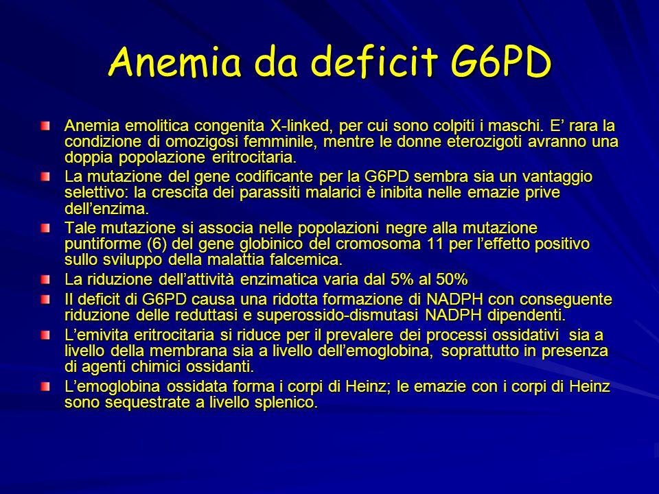Anemia da deficit G6PD Anemia emolitica congenita X-linked, per cui sono colpiti i maschi. E' rara la condizione di omozigosi femminile, mentre le don