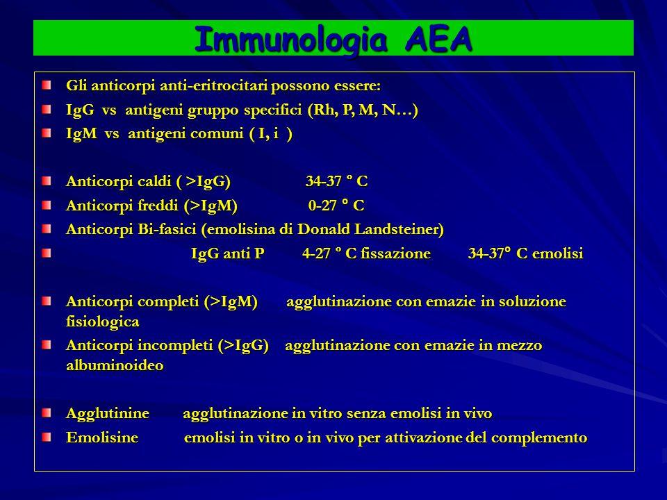 Immunologia AEA Gli anticorpi anti-eritrocitari possono essere: IgG vs antigeni gruppo specifici (Rh, P, M, N…) IgM vs antigeni comuni ( I, i ) Anticorpi caldi ( >IgG) 34-37 º C Anticorpi freddi (>IgM) 0-27 ° C Anticorpi Bi-fasici (emolisina di Donald Landsteiner) IgG anti P 4-27 º C fissazione 34-37° C emolisi IgG anti P 4-27 º C fissazione 34-37° C emolisi Anticorpi completi (>IgM) agglutinazione con emazie in soluzione fisiologica Anticorpi incompleti (>IgG) agglutinazione con emazie in mezzo albuminoideo Agglutinine agglutinazione in vitro senza emolisi in vivo Emolisine emolisi in vitro o in vivo per attivazione del complemento