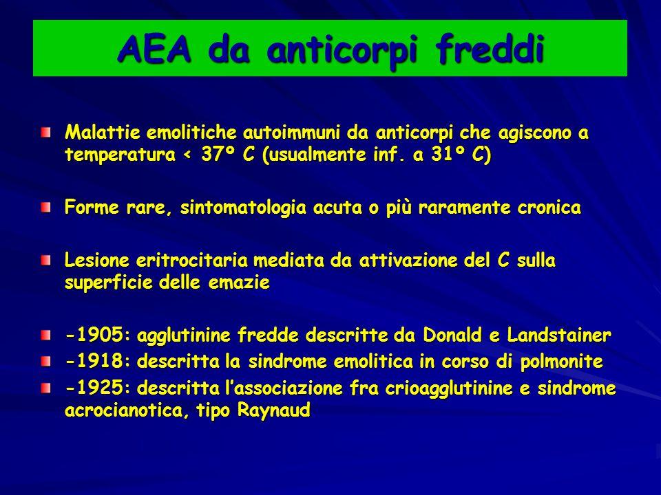 AEA da anticorpi freddi Malattie emolitiche autoimmuni da anticorpi che agiscono a temperatura < 37º C (usualmente inf. a 31º C) Forme rare, sintomato