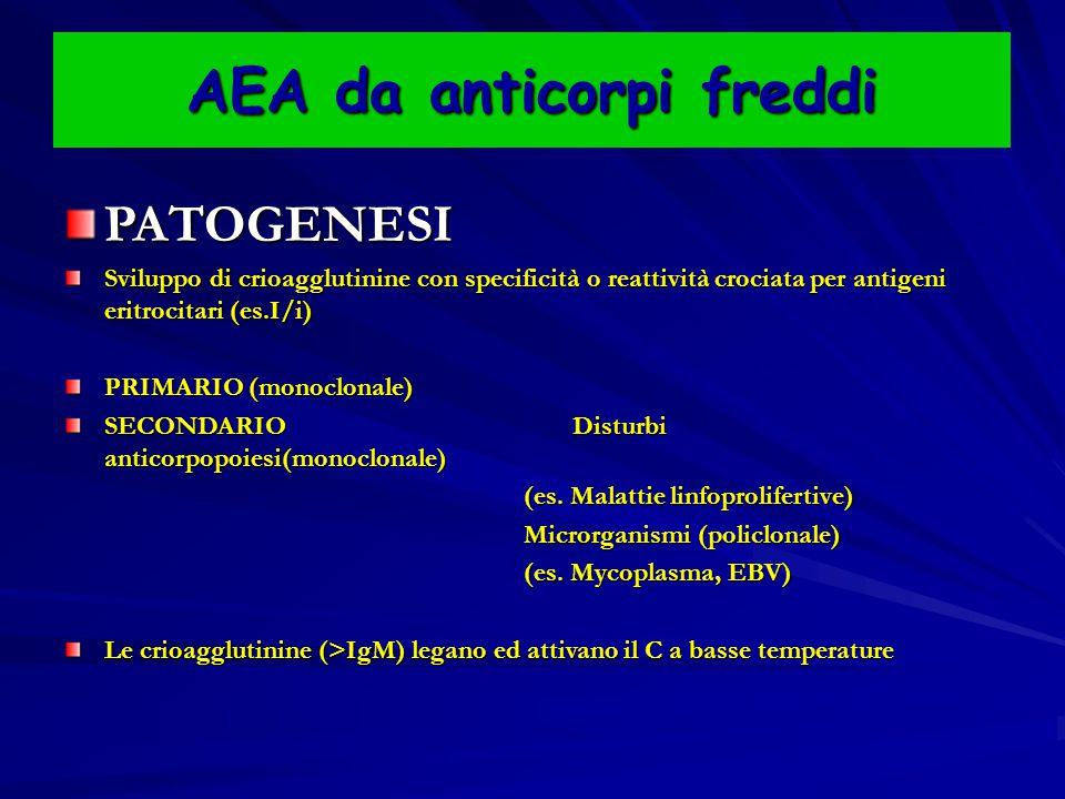 AEA da anticorpi freddi PATOGENESI Sviluppo di crioagglutinine con specificità o reattività crociata per antigeni eritrocitari (es.I/i) PRIMARIO (monoclonale) SECONDARIO Disturbi anticorpopoiesi(monoclonale) (es.