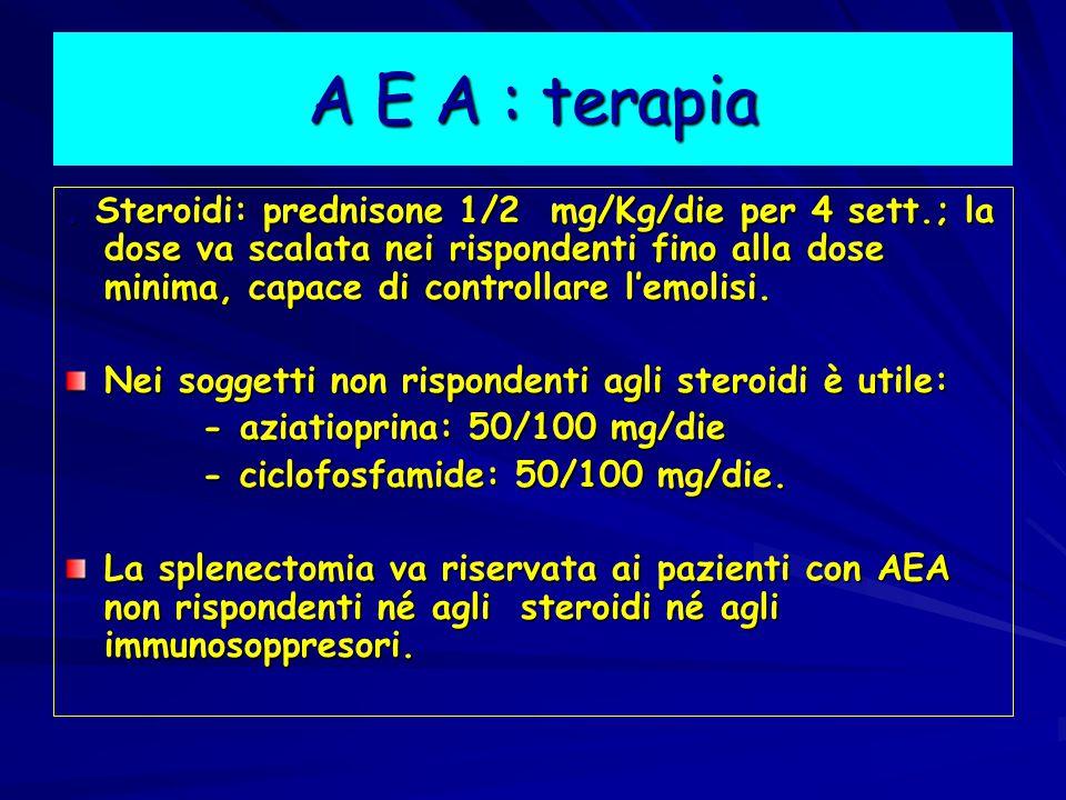 A E A : terapia.