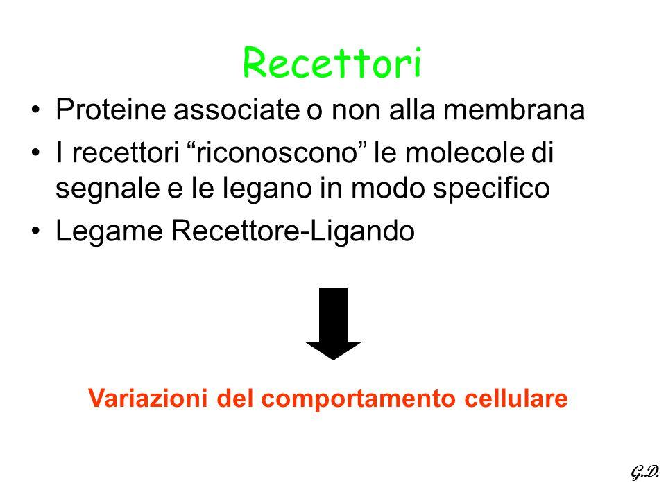 """Recettori Proteine associate o non alla membrana I recettori """"riconoscono"""" le molecole di segnale e le legano in modo specifico Legame Recettore-Ligan"""