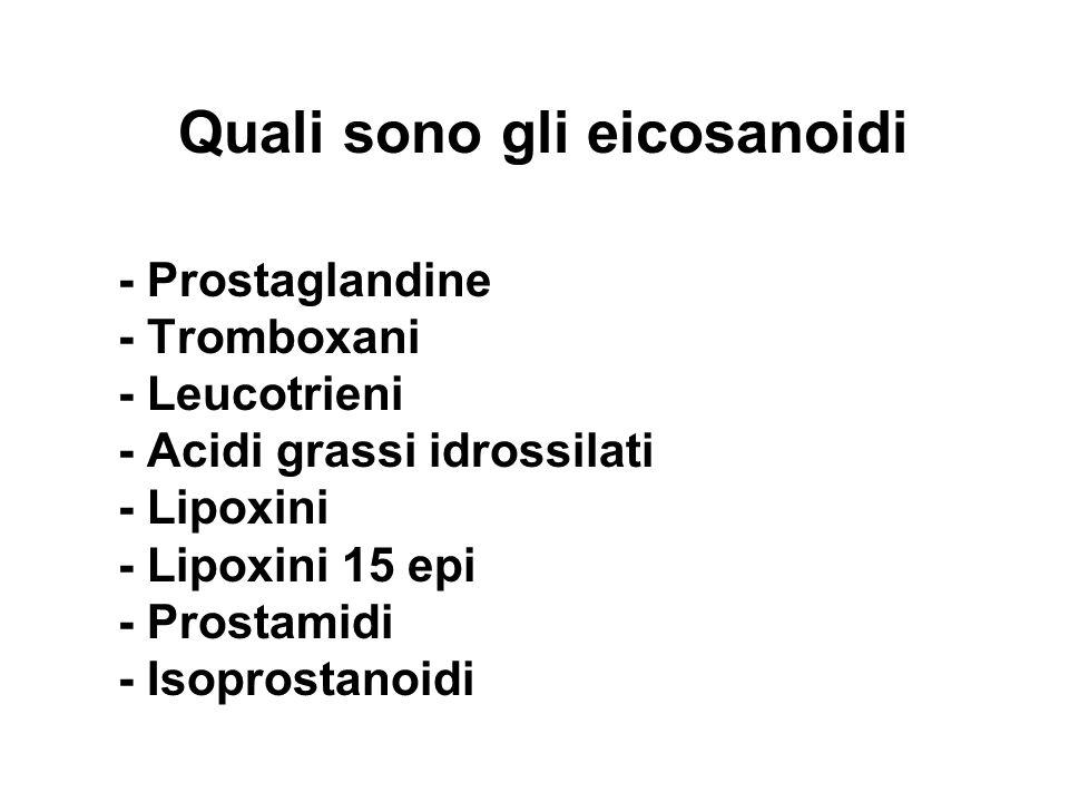 Quali sono gli eicosanoidi - Prostaglandine - Tromboxani - Leucotrieni - Acidi grassi idrossilati - Lipoxini - Lipoxini 15 epi - Prostamidi - Isoprost