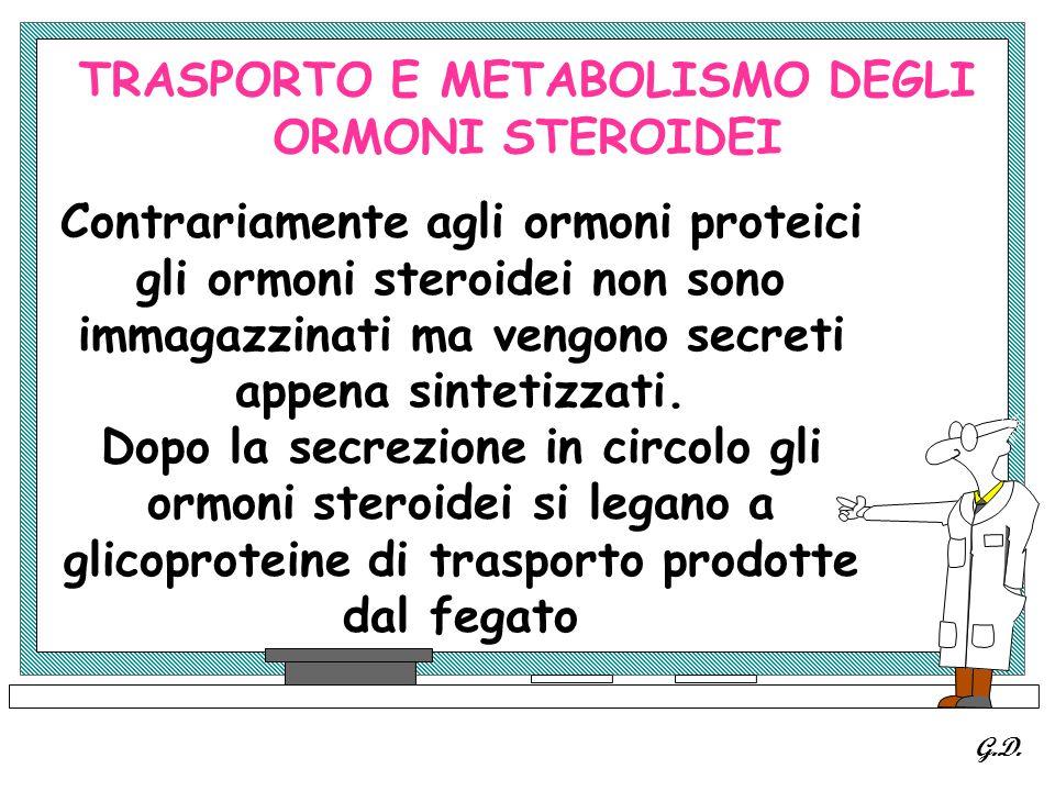 TRASPORTO E METABOLISMO DEGLI ORMONI STEROIDEI Contrariamente agli ormoni proteici gli ormoni steroidei non sono immagazzinati ma vengono secreti appe