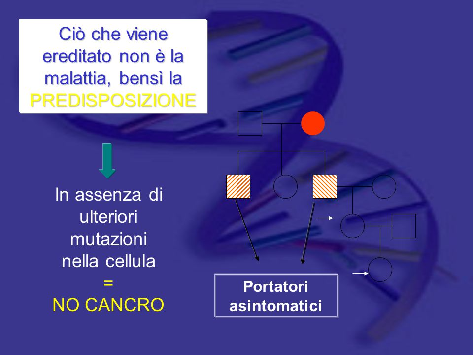 Portatori asintomatici In assenza di ulteriori mutazioni nella cellula = NO CANCRO Ciò che viene ereditato non è la malattia, bensì la PREDISPOSIZIONE
