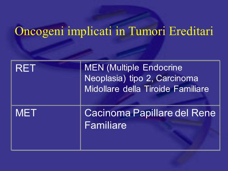 RET MEN (Multiple Endocrine Neoplasia) tipo 2, Carcinoma Midollare della Tiroide Familiare METCacinoma Papillare del Rene Familiare Oncogeni implicati in Tumori Ereditari