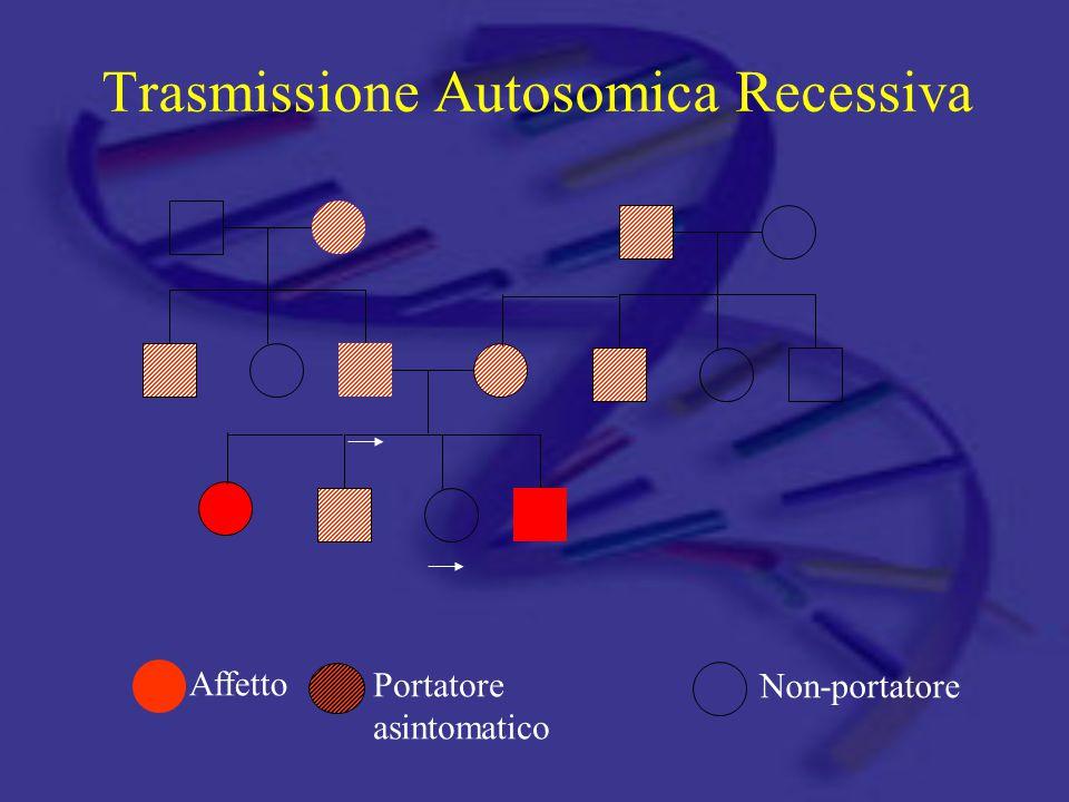 Trasmissione Autosomica Recessiva Affetto Portatore asintomatico Non-portatore